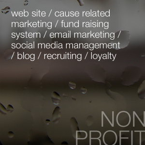 web site / cause related marketing / fund raising system / email marketing / social media management / blog / recruiting / loyalty