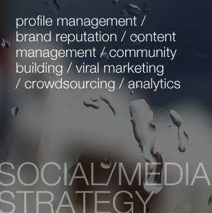 profile management / brand reputation / content management / community building / viral marketing / crowdsourcing / analytics